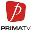 PRIMA TV - Totul despre mame