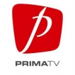 Prima TV - Disease of a society