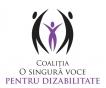Propunere de proiect de lege privind drepturile copiilor cu dizabilități prezentata de CEDCD si Coalitia OSVD în Parlamentul României